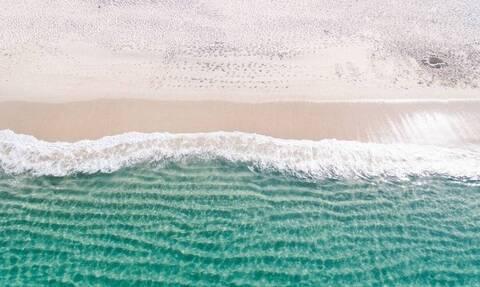 Τρόμος σε παραλία: Απόκοσμο πλάσμα ξεβράστηκε σε παραλία