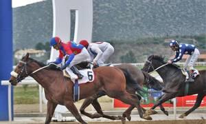 Εννέα ιπποδρομίες που υπόσχονται μεγάλα κέρδη την Κυριακή στο Markopoulo Park