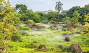 Ταξίδι - εφιάλτης! Χάθηκαν στη ζούγκλα - Πού τους βρήκαν 34 ημέρες μετά