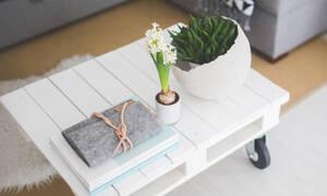 Ο τέλειος φυσικός τρόπος για να καθαρίσεις την ατμόσφαιρα μέσα στο σπίτι σου