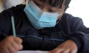 Νέος κοροναϊός: Μελέτη Ελλήνων επιστημόνων αποκαλύπτει από πού προήλθε ο επικίνδυνος ιός