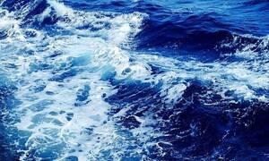 Αυτό που είδαν στην θάλασσα στην Εύβοια, δεν θα το ξεχασουν ποτέ (pics)