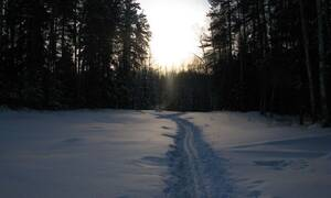 Μακελειό στα χιόνια: Τους βρήκαν γυμνούς, χωρίς μάτια και γλώσσα