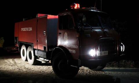 Βοιωτία: Ένας νεκρός από πυρκαγιά σε παράγκα στον Ορχομενό