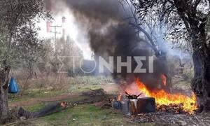 На Лесбосе мигранты подожгли район, расположенный возле электростанции острова