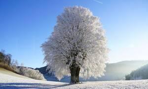 Μερομήνια 2020: Έρχονται χιόνια; Ο καιρός μέχρι το καλοκαίρι