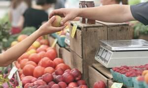 Κρήτη: Επική ανακοίνωση αγρότη για να προστατέψει την παραγωγή του (pics)