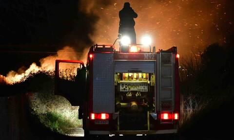 Μεγάλη πυρκαγιά στην Αργολίδα: Κινδύνευσαν σπίτια (pics)