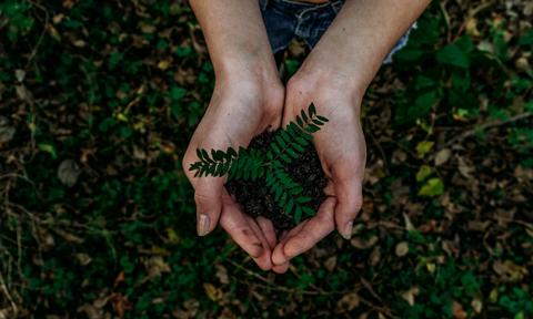 Nestlé Ελλάς: Πράσινες δεσμεύσεις για ένα καλύτερο αύριο