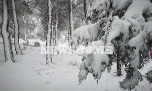Καιρός - Κλέαρχος Μαρουσάκης: Χιόνια και στην Αττική – Δείτε πότε και πού