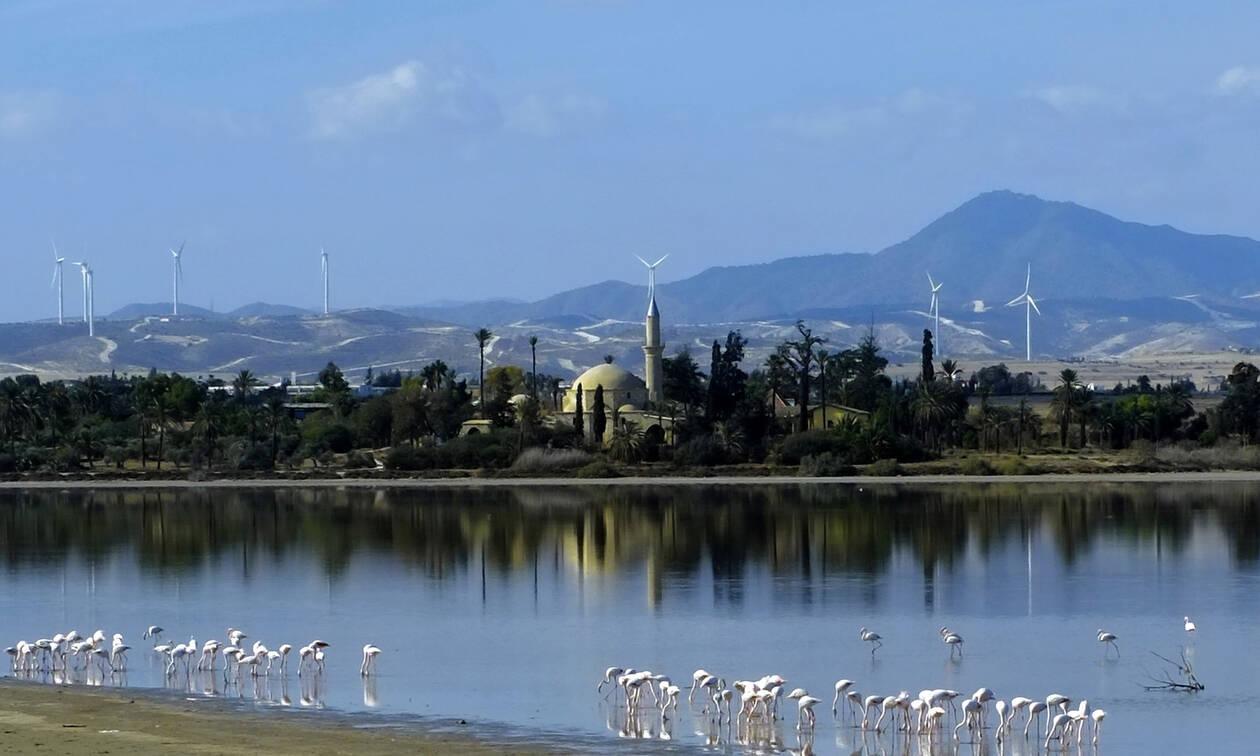 Κύπρος: Θύελλα αντιδράσεων για την οδό «Istanbul» στη Λάρνακα (pics)