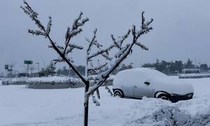 ΤΩΡΑ: Χιονίζει στην Αττική - Το έστρωσε στην Πάρνηθα