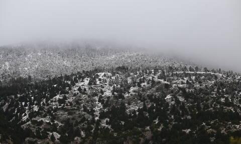 Έκτακτο δελτίο ΕΜΥ: «Βουτιά» της θερμοκρασίας την Πέμπτη - Πότε θα υποχωρήσουν τα χιόνια