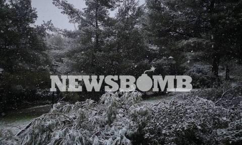 Καιρός - Τάσος Αρνιακός στο Newsbomb.gr: Χιόνια και στην Αθήνα σε λίγες ώρες