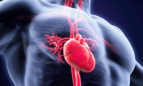 Παρακολουθήστε σε 8 λεπτά τη μεταμόσχευση μιας καρδιάς (vid)