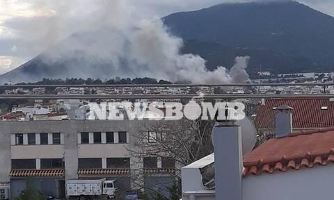 Φωτιά ΤΩΡΑ: Μεγάλη πυρκαγιά στην Αγία Παρασκευή