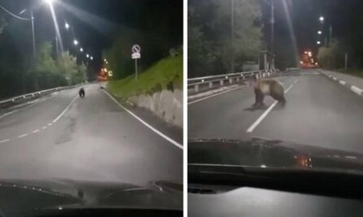 Οδηγούσε στην Εθνική και ξαφνικά της συνέβη κάτι αναπάντεχο! (vid)