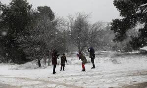 Καιρός: Χιόνισε στην Αττική - Πότε εξασθενεί η κακοκαιρία (pics)