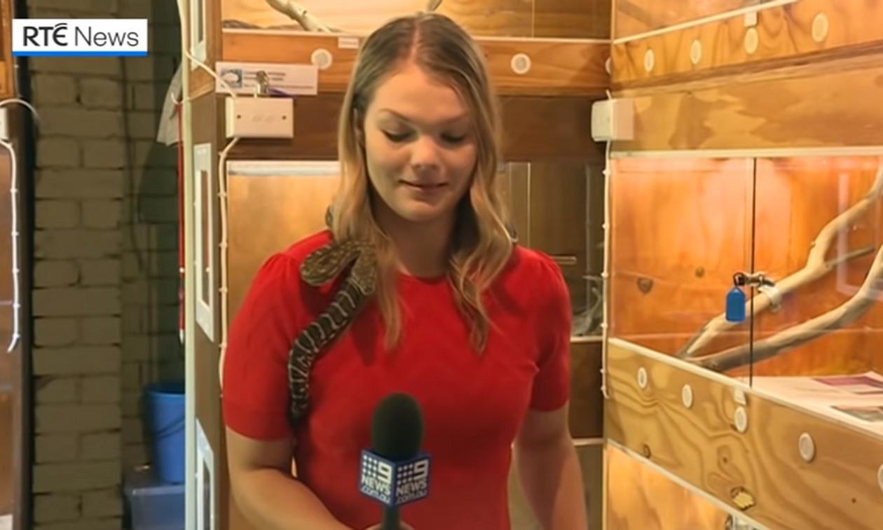 Δημοσιογράφος έκανε ρεπορτάζ με φίδι στο σβέρκο της - Έπαθε ΣΟΚ μ' αυτό που έγινε μετά (vid)