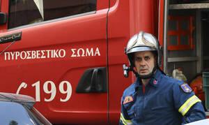 Τραγωδία στη Χαλκιδική: Βρέθηκε νεκρή η 69χρονη αγνοούμενη