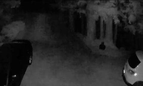 Τσέκαραν την κάμερα ασφαλείας στην αυλή τους - «Πάγωσαν» μ' αυτό που είδαν (vid)