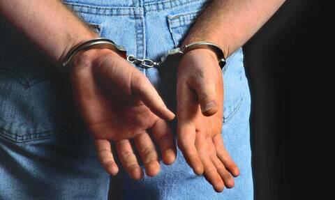 Πέλλα: Άφωνοι οι αστυνομικοί - Δείτε τι βρήκαν στην αυλή 53χρονου