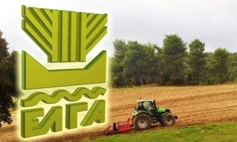 ΕΛΓΑ: Οικονομική ενίσχυση 2,1 εκατ. ευρώ σε 829 παραγωγούς
