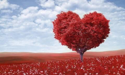 Το μεγαλύτερο site ερωτικών ταινιών κάνει ένα ξεχωριστό δώρο ενόψει του Αγίου Βαλεντίνου (photos)