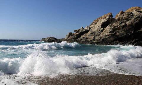 Τερατογένεση! Απόκοσμες εικόνες σε παραλία - Δείτε τι ξέβρασε η θάλασσα