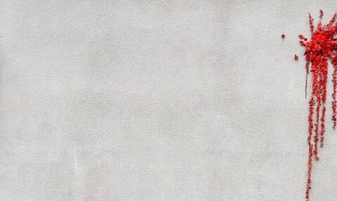 Η πιο «αιματηρή» φωτογραφία που κυκλοφόρησε στο διαδίκτυο για τον Άγιο Βαλεντίνο