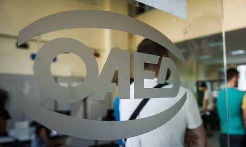 ΟΑΕΔ: Λίγες μέρες για την υποβολή αιτήσεων για το νέο πρόγραμμα νεανικής επιχειρηματικότητας
