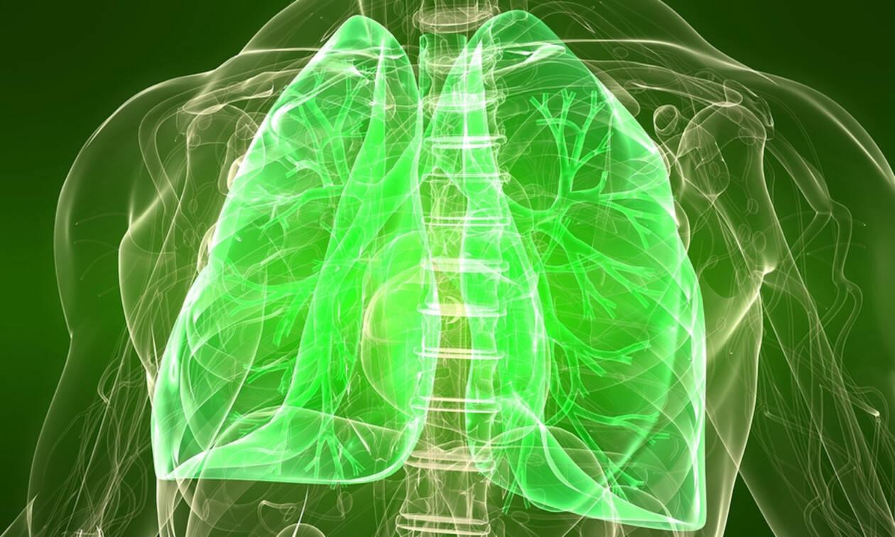 Πνεύμονες: Οι τροφές που συμβάλλουν στην ομαλή λειτουργία τους (εικόνες)