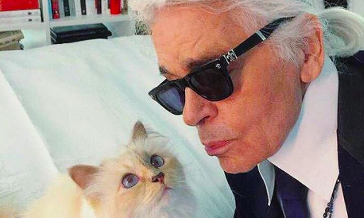 Η πλουσιότερη γάτα στον πλανήτη - Πόσα της άφησε ο Καρλ Λάγκερφελντ;
