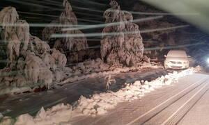Πυκνή χιονόπτωση στην Πάρνηθα: Δείτε LIVE πού χιονίζει σε όλη τη χώρα