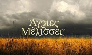 Άγριες Μέλισσες: Πρωταγωνιστούν στη σειρά και είναι το νέο ζευγάρι της ελληνικής showbiz
