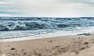 Φρίκη σε ελληνική παραλία: Δείτε τι ξέβρασε η θάλασσα (pics)