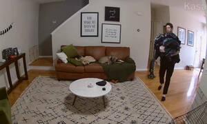 Δείτε τι κάνει ο σκύλος όταν βλέπει το αφεντικό του με τα άπλυτα στο χέρι - Το βίντεο έγινε viral