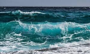 Φρίκη σε παραλία: Δείτε τι ξέβρασε η θάλασσα - Πανικός στους λουόμενους