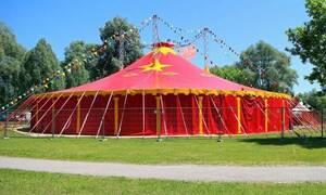 Τρόμος σε τσίρκο: Ζώο επιτέθηκε στον θηριοδαμαστή - ΣΚΛΗΡΕΣ ΕΙΚΟΝΕΣ