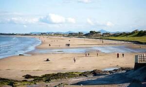 Φρίκη σε παραλία: Ούρλιαζαν με αυτά που βρήκαν παλουκωμένα (Σκληρές εικόνες)