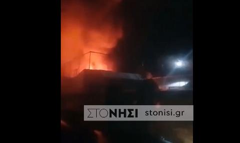 Στις φλόγες η δομή φιλοξενίας στη Συκαμνιά Μυτιλήνης