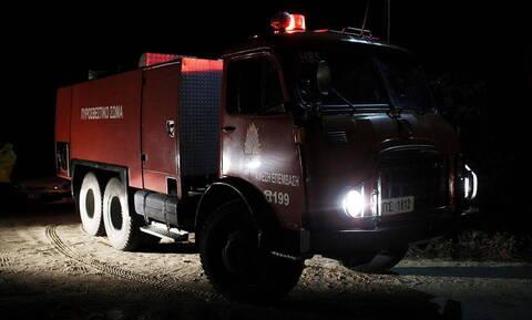 Λασίθι: Μαίνεται μεγάλη πυρκαγιά στο Λιμνάκαρο