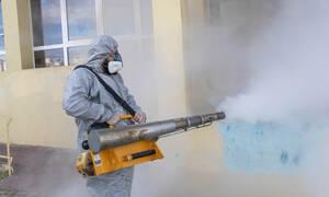 Κοροναϊός: Προσοχή! Επικαλούνται τον ιό για να σας κλέβουν - Πώς στήνουν την απάτη