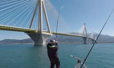 Ψαράς ρίχνει τα καλάμια του στο Αντίρριο και μετά από λίγο... τρελαίνεται με το «θηρίο»(video)