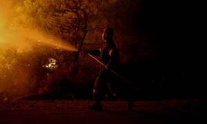 Μυτιλήνη: Αναμένεται το πόρισμα της Πυροσβεστικής για τη φωτιά στις εγκαταστάσεις ΜΚΟ