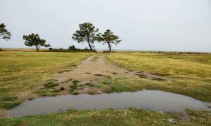 Καιρός: Τρίτη με τοπικές βροχές και άνοδο της θερμοκρασίας - Πότε θα υποχωρήσουν τα φαινόμενα