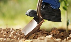 Κοροναϊός: O ΕΛΓΟ-ΔΗΜΗΤΡΑ αναστέλλει τα προγράμματα κατάρτισης νέων γεωργών για 14 ημέρες