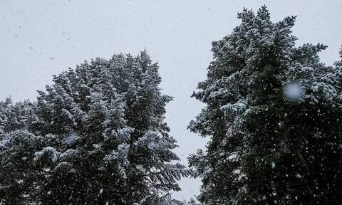 Καιρός - ΕΜΥ: Κακοκαιρία διαρκείας έως και το Σάββατο με καταιγίδες και χιόνια στα ορεινά...