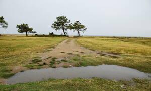 Καιρός τώρα: Βροχερή η Τρίτη σε πολλές περιοχές - Πού θα είναι έντονα τα φαινόμενα