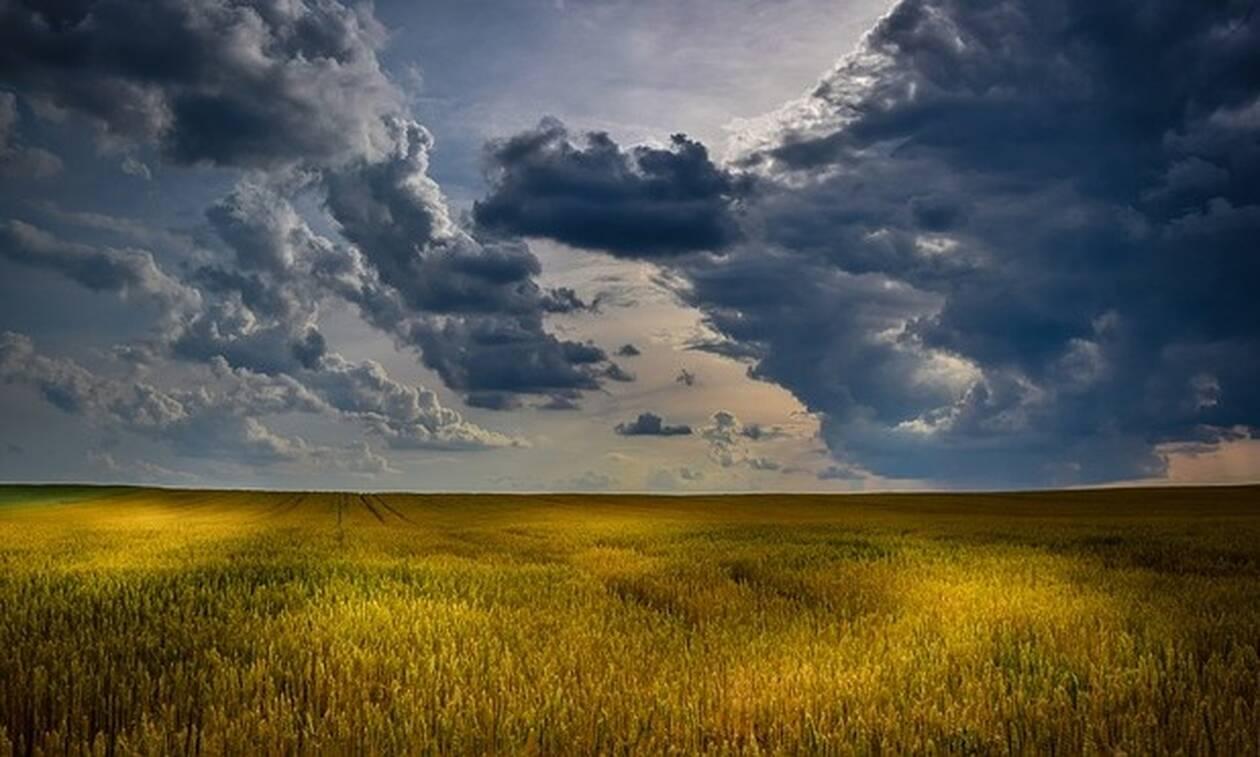 Αυτό που είδε στο χωράφι του στην Εύβοια, τον έβαλε σε σκέψη